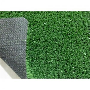 Fake Synthetic Apartment Dog Grass