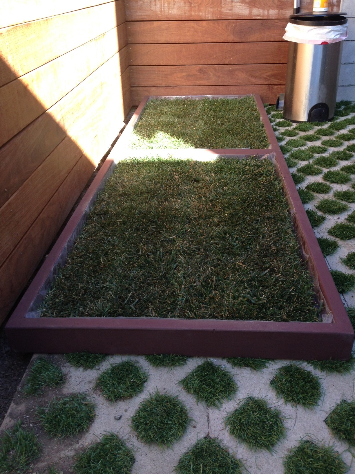 doggy the city dog grass delivery in west hollywood. Black Bedroom Furniture Sets. Home Design Ideas